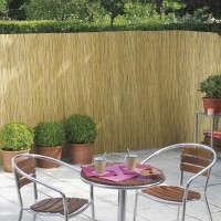 Gard, paravan imitatie bambus ( stuf), 2 m x 6 m, PLANT MASTER